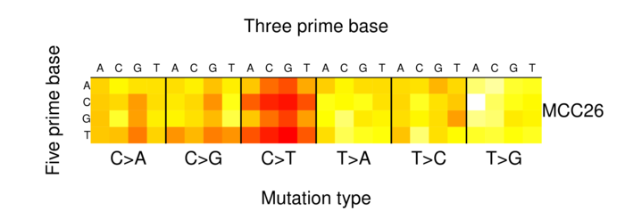 heatmap image for 1298234