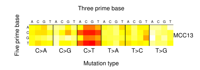 heatmap image for 1333003