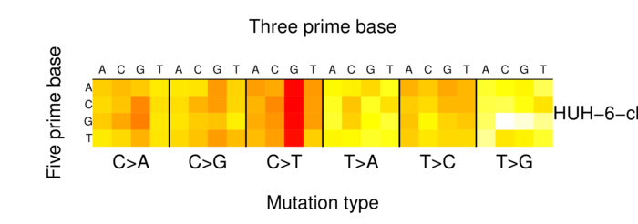 heatmap image for 907070