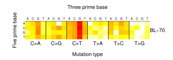 heatmap image for 910707